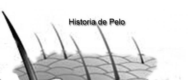 Historia de Pelo
